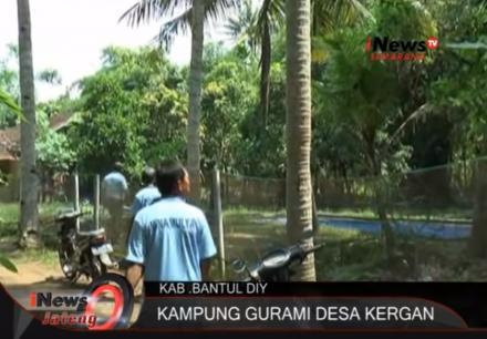 Pemberdayaan Masyarakat Dusun Kergan Budidaya Ikan Gurami
