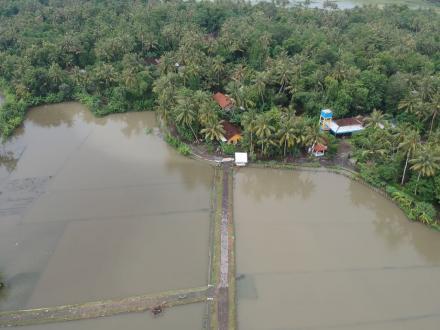Pantauan Dampak Banjir Wilayah Tirtomulyo